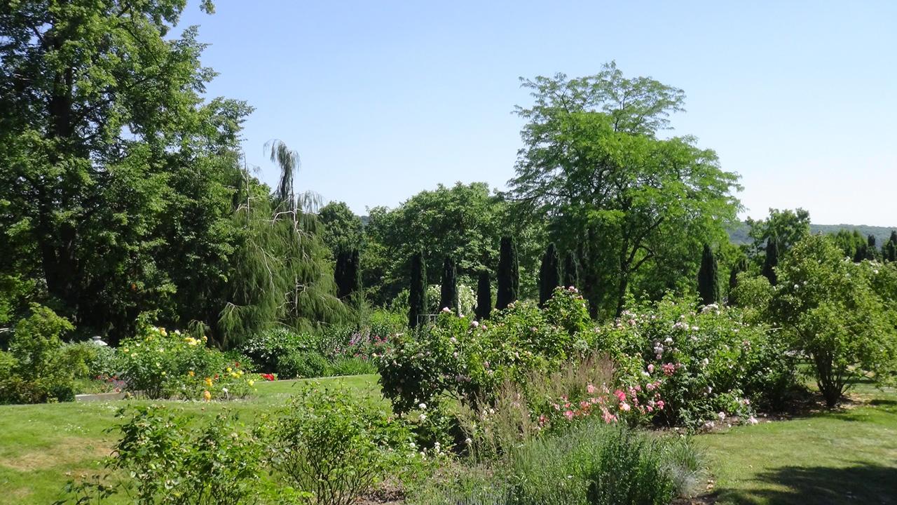 Garten impulse im freistaat th ringen for Garten in erfurt