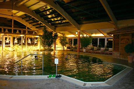 55PLUS Arterhof, biologisches Schwimmbecken