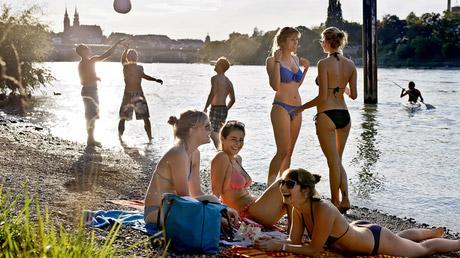 Schwimmen Im Rhein
