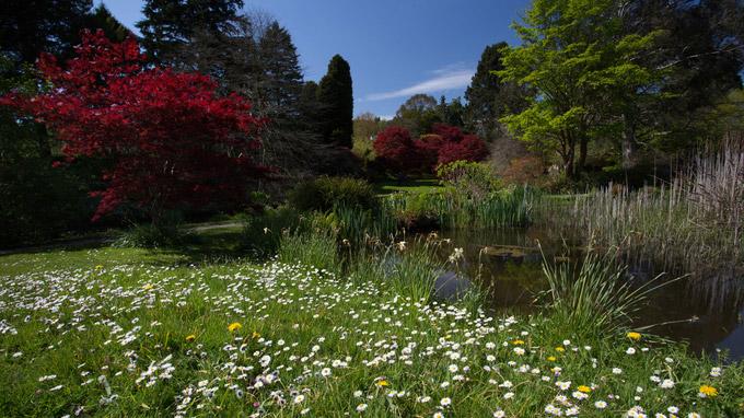 © Anita Arneitz & Matthias Eichinger / Mount Usher Gardens, Nordirland_13 / Zum Vergrößern auf das Bild klicken