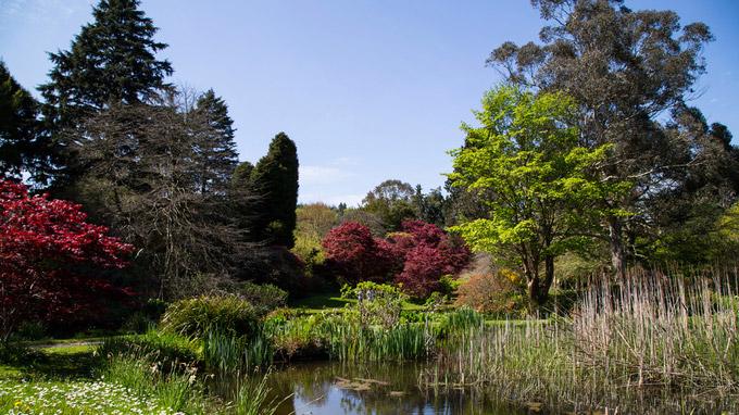 © Anita Arneitz & Matthias Eichinger / Mount Usher Gardens, Nordirland_5 / Zum Vergrößern auf das Bild klicken