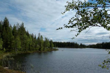 Abborrträsk, Schweden - ruhiger See