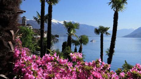 © obs/Ticino Turismo/Christof Sonderegger / Brissago Tessin, Schweiz