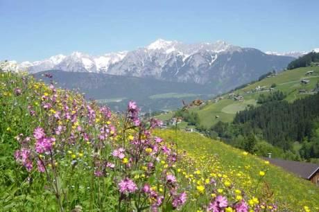 Tradition und Musik hautnah erleben – Best of Zillertal Blog