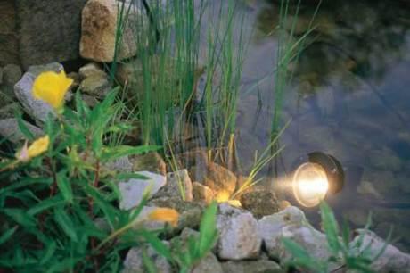 Gartengestaltung durch lichteffekte for Wassertiere teich