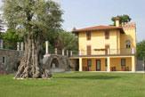 Il Roncal in Montebello, Agriturismo / Zum Vergrößern auf das Bild klicken