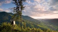 © ZweiTälerLand Tourismus | Clemens Emmler / Abendleuchten, Schwarzwald / Zum Vergrößern auf das Bild klicken