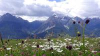 © Edith Spitzer, Wien / Alpen - Blick Richtung Dolomiten / Zum Vergrößern auf das Bild klicken