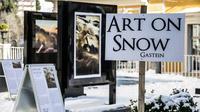 © Gasteinertal Tourismus / Art on Snow - Glow in the dark / Zum Vergrößern auf das Bild klicken