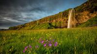 © Guide to Iceland / Iurie Belegurschi / Island, Seljalandfoss / Zum Vergrößern auf das Bild klicken