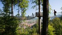 © ZweiTälerLand Tourismus / Clemens Emmler / Baumkronenweg, Schwarzwald / Zum Vergrößern auf das Bild klicken