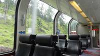 © Edith Spitzer, Wien / Bernina Express / Zum Vergrößern auf das Bild klicken