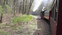 © Edith Spitzer, Wien / Harzer-Schmalspurbahn - Fahrt zum Brocken / Zum Vergrößern auf das Bild klicken