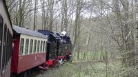 © Edith Spitzer, Wien / Harzer-Schmalspurbahn - Impressionen / Zum Vergrößern auf das Bild klicken