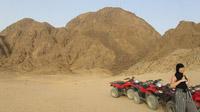 © Edith Köchl, Wien / Sharm el Sheikh, Ägypten - Wüste / Zum Vergrößern auf das Bild klicken