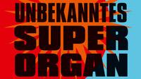 © BeltzVerlag / Cover Ihr unbekanntes Superorgan_detail