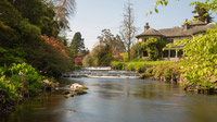 © Anita Arneitz & Matthias Eichinger / Mount Usher Gardens, Nordirland_15 / Zum Vergrößern auf das Bild klicken