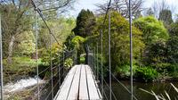 © Anita Arneitz & Matthias Eichinger / Mount Usher Gardens, Nordirland_4 / Zum Vergrößern auf das Bild klicken