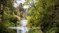 © Anita Arneitz & Matthias Eichinger / Mount Usher Gardens, Nordirland_6 / Zum Vergrößern auf das Bild klicken
