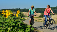 © steve.haider.com / Radfahrer am Neusiedler See / Zum Vergrößern auf das Bild klicken