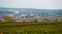 © Vino Versum Poysdorf / Michael Loizenbauer / Poysdorf, Weinviertel / Zum Vergrößern auf das Bild klicken
