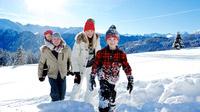 © www.artinaction.de / Serfaus-Fiss-Ladis - Schneegenuss / Zum Vergrößern auf das Bild klicken