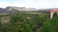 © 55PLUS Medien GmbH, Wien / Edith Spitzer / Vinales-Tal, Kuba - Aussicht / Zum Vergrößern auf das Bild klicken