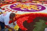 Br�ssel, Belgien - Blumenteppich / Zum Vergr��ern auf das Bild klicken
