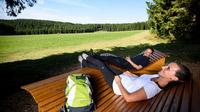 © Ferienland Schwarzwald / Schwarzwald, DE - Heilklimasteig im Schwarzwald / Zum Vergrößern auf das Bild klicken