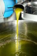 Olivenölproduktion - Kaltpressung / Zum Vergrößern auf das Bild klicken