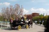Hotel Reiter`s Supreme, Bad Tatzmannsdorf: Kutschenfahrt / Zum Vergrößern auf das Bild klicken
