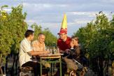 Thomas Steiner / Winzerhof Landauer-Gisperg - Heuriger zwischen Weinreben / Zum Vergrößern auf das Bild klicken