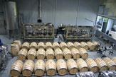 Weingut Esterházy - Produktion / Zum Vergrößern auf das Bild klicken