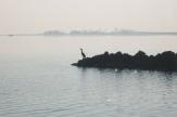 In der Lagune von Grado / Zum Vergrößern auf das Bild klicken