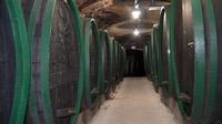 55PLUS Medien GmbH / Gänge mit Fässern im Weinkeller Ptuj, Slowenien / Zum Vergrößern auf das Bild klicken