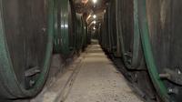 55PLUS Medien GmbH / Tiefe Gänge und Fässer im Weinkeller Ptuj, Slowenien / Zum Vergrößern auf das Bild klicken