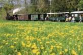 Steyrtal Museumsbahn, OÖ - Schmalspurbahn / Zum Vergrößern auf das Bild klicken