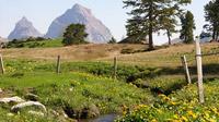© Schwyz Tourismus / Stoos Holbrig Boden / Zum Vergrößern auf das Bild klicken