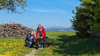 © Wiener Alpen / Franz Zwickl / Wiener Alpen - Wandern mit dem Hund