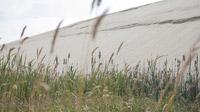 © Erlebniszentrum Naturgewalten / Nordsee, DE - Tümpel an der Wanderdüne / Zum Vergrößern auf das Bild klicken