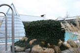 55PLUS Rottal-Terme, Vitarium - Aussenbecken mit Dampfpyramide / Zum Vergrößern auf das Bild klicken