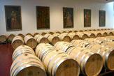Weingut Esterházy, Trausdorf - Weinfässer in der Galerie / Zum Vergrößern auf das Bild klicken