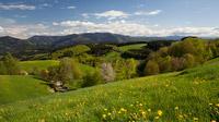 © ZweiTälerLand Tourismus / Clemes Emmler / ZweiTälerLand, Schwarzwald / Zum Vergrößern auf das Bild klicken