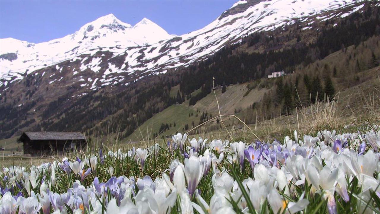 Wanderungen im nationalpark hohe tauern Österreich