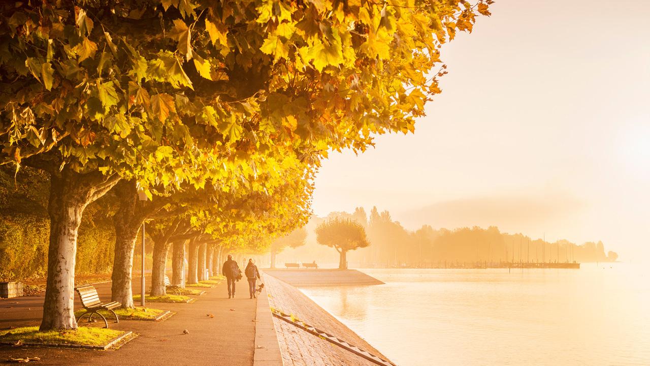 Goldener Herbst In Konstanz Am Bodensee