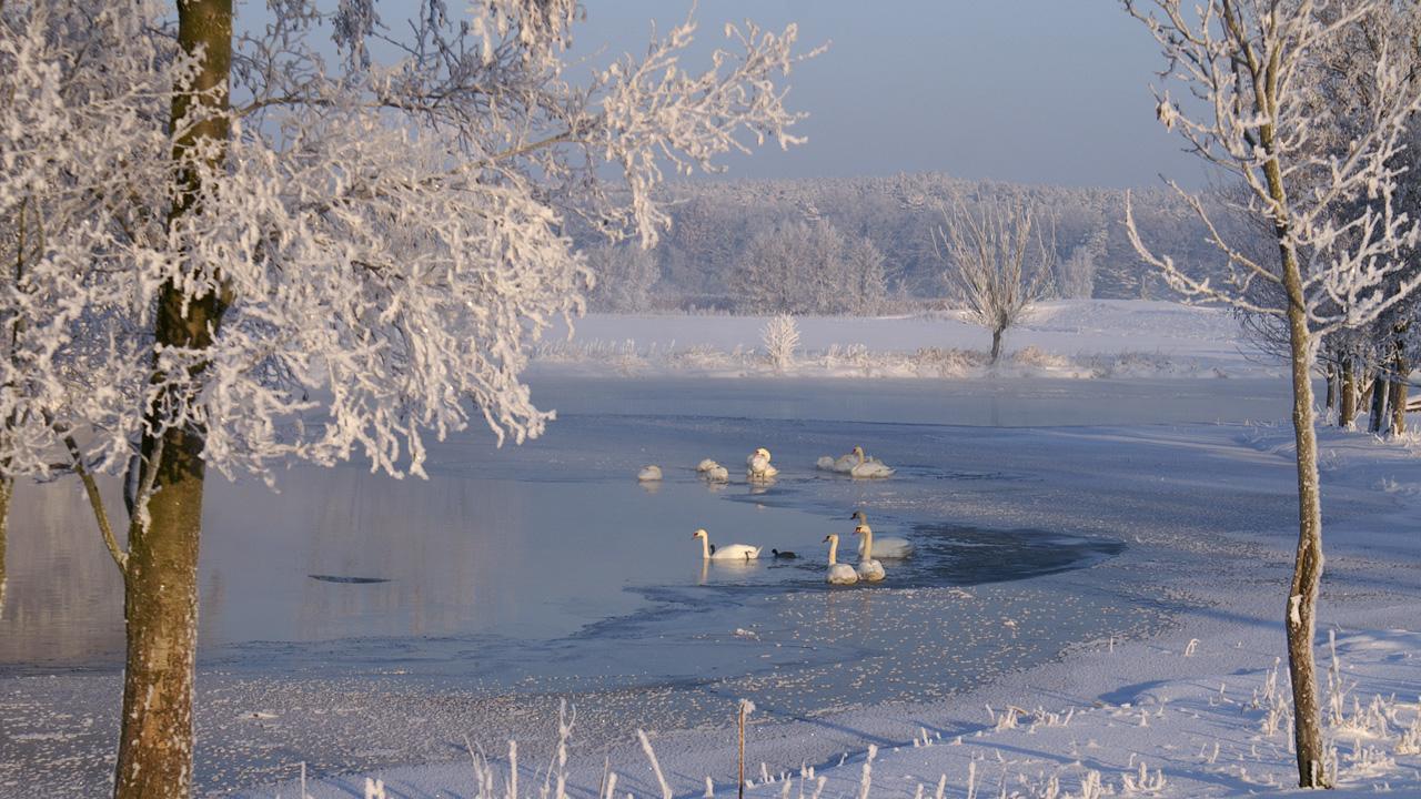 Winterliches Brandenburg 2021/18