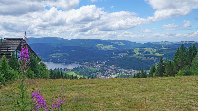 © pixabay / Pixel mixer / Titisee, Bayern - Hochfirst / Zum Vergrößern auf das Bild klicken