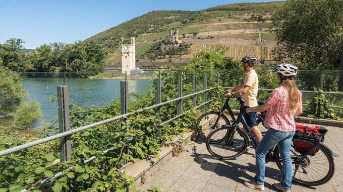 Rheinhessen, DE - Rheinradweg in Rheinhessen