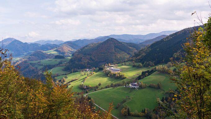 Waidhofen, NÖ - Aussicht