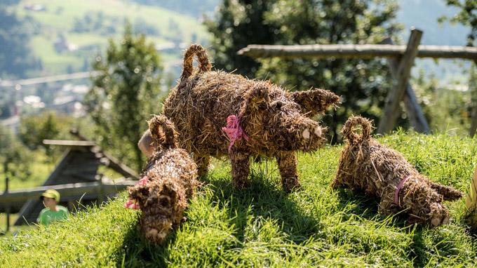 © Gasteinertal Tourismus GmbH / Creatina / Bad Hofgastein, Salzburg - Bauernherbst / Zum Vergrößern auf das Bild klicken
